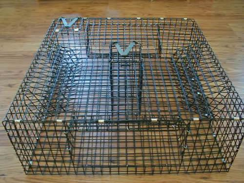 eFunda Directory Service: Company Details: Robust Lobster Trap Co., Ltd.